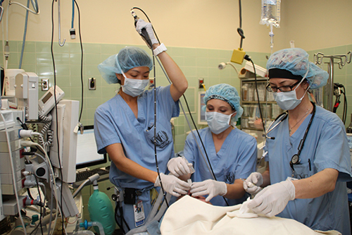 Anesthesiology and Internal Medicine Residents on Anesthesia Rotation in the Operating Room