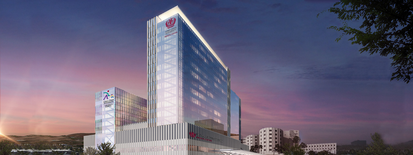 Vision 2020 Concept Building for Loma Linda University Health
